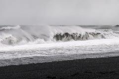 Praia preta da areia - Islândia Fotos de Stock Royalty Free