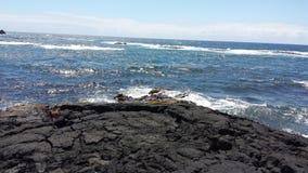 Praia preta Havaí da areia Imagens de Stock