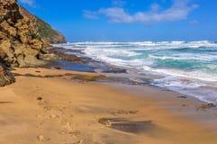 Praia Pristine na grande estrada do oceano, Austrália fotos de stock royalty free