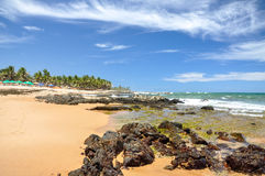 Praia robi forte, salvador de bahia (Brazylia) obrazy stock