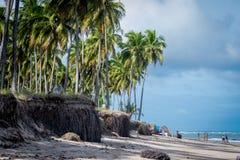 Praia robi Paiva Pernambuco, Brazylia, - zdjęcie stock