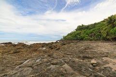 Praia rochosa e árvores Costa Rica Imagem de Stock