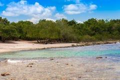 Praia rochosa em Bayahibe, La Altagracia, República Dominicana Copie o espaço para o texto Imagem de Stock