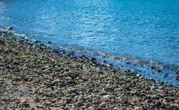Praia rochosa Foco seletivo Fotografia de Stock