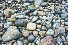 Praia rochosa no arquipélago dos acores Imagens de Stock Royalty Free