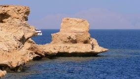 Praia rochosa no Mar Vermelho com o penhasco perto do recife de corais Egypt Recurso na costa de Mar Vermelho video estoque