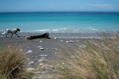 Praia rochoso com mar e céu azul além da imagem de fundo tão cênico foto de stock