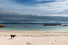 Praia só no Rias Baixas, Galiza Foto de Stock Royalty Free