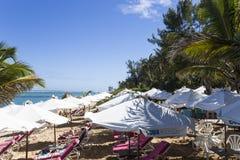 Praia salina do La, La Reunion Island, france Fotos de Stock Royalty Free