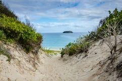 Praia salina grandioso - St Barths Imagens de Stock Royalty Free
