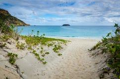 Praia salina grandioso - St Barths Imagens de Stock