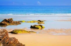 Praia selvagem da areia na costa do oceano Fotos de Stock Royalty Free