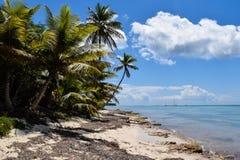 Praia selvagem do Cararibe fotos de stock