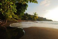 Praia selvagem e o oceano Imagens de Stock