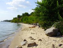 Praia selvagem pelo rio, entre a floresta imagens de stock royalty free