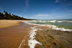 Praia Serena - Macejo. A Brazilian beach. Brazil has more than 8000 km of coast almost entirely embraced by wonderful and sunny beaches Royalty Free Stock Photography