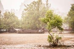 Praia sob uma chuva tropical - Ao Anng de Railay, Tailândia imagens de stock royalty free