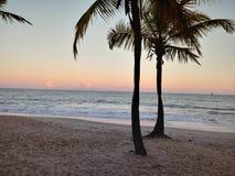Praia-strand fotografering för bildbyråer