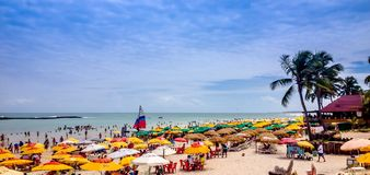 Praia surpreendente perto de Maceio, Brasil Imagem de Stock