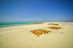 Praia Tanzânia de Zanzibar imagem de stock royalty free
