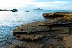 Praia Tartaruga Royaltyfri Foto