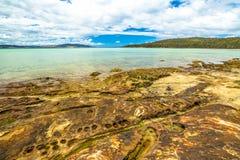 Praia Tasmânia da baía do cal Imagem de Stock