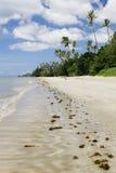 Praia tropica imagens de stock royalty free