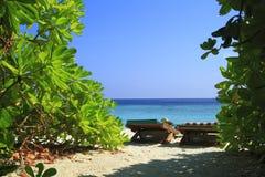 Praia tropical Imagens de Stock Royalty Free