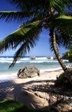 Praia tropical Fotos de Stock Royalty Free