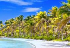 Praia tropical bonita Foto de Stock