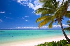 Praia tropical bonita imagens de stock royalty free