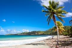 Praia tropical bonita em Baracoa, Cuba Imagens de Stock