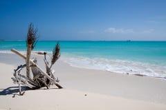 Praia tropical com areia branca Fotografia de Stock Royalty Free