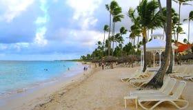Praia tropical com palmas fotografia de stock royalty free