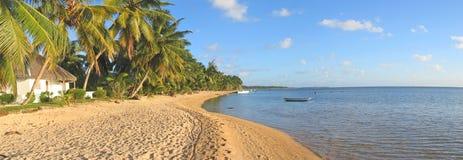 Praia tropical com palmeiras Fotos de Stock Royalty Free