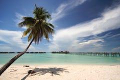 Praia tropical com recurso fotos de stock
