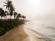 praia tropical da ilha com o tiro aéreo do nascer do sol das palmeiras imagem de stock
