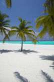 Praia tropical de Maldives Foto de Stock Royalty Free