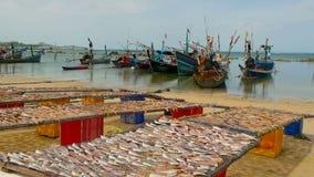 Praia tropical do oceano, barco de pesca colorido tradicional de madeira amarrado Seascape perto da vila muçulmana pobre asiática video estoque
