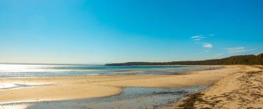 Praia tropical do oceano com linha de árvore imagem de stock royalty free
