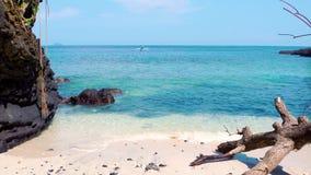 Praia tropical do paraíso com areia branca e a árvore caída conceito largo do fundo do panorama do turismo do curso video estoque