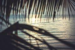 Praia tropical do por do sol com opinião do mar da cabana com folhas de palmeira de suspensão e horizonte sobre o mar como o fund Imagem de Stock