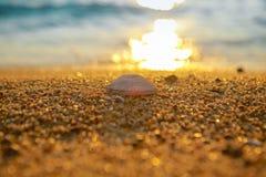 Praia tropical do por do sol Fundo bonito fotos de stock royalty free