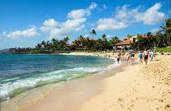 Praia tropical em Kauai, Havaí Foto de Stock
