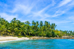 Praia tropical em Sri Lanka Fotos de Stock Royalty Free
