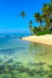Praia tropical em Sri Lanka Imagem de Stock Royalty Free