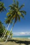 Praia tropical ensolarada Imagem de Stock