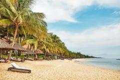 Praia tropical exótica Imagem de Stock Royalty Free