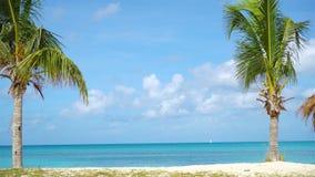 Praia tropical idílico com areia branca, água do oceano de turquesa e o céu azul filme