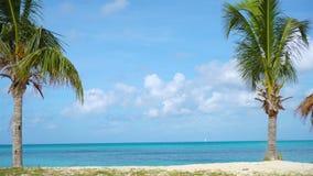 Praia tropical idílico com areia branca, água do oceano de turquesa e o céu azul video estoque